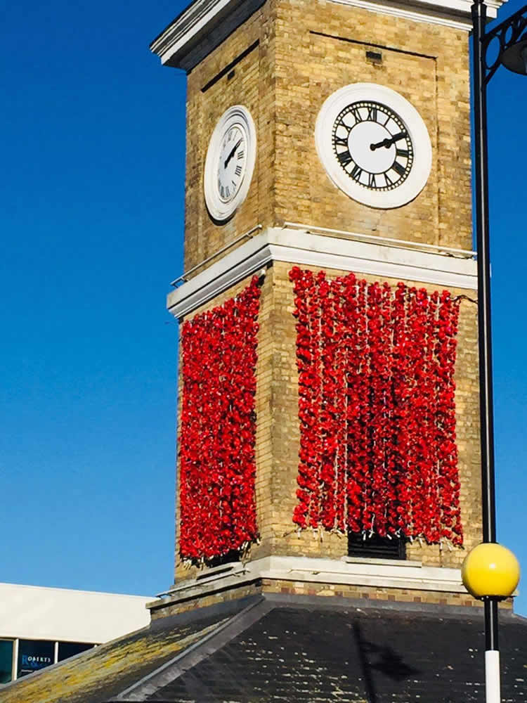 Love Hoddesdon Poppy Project